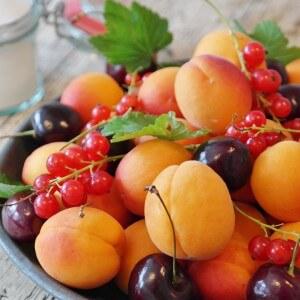 Früchte - Frisch & Biologisch